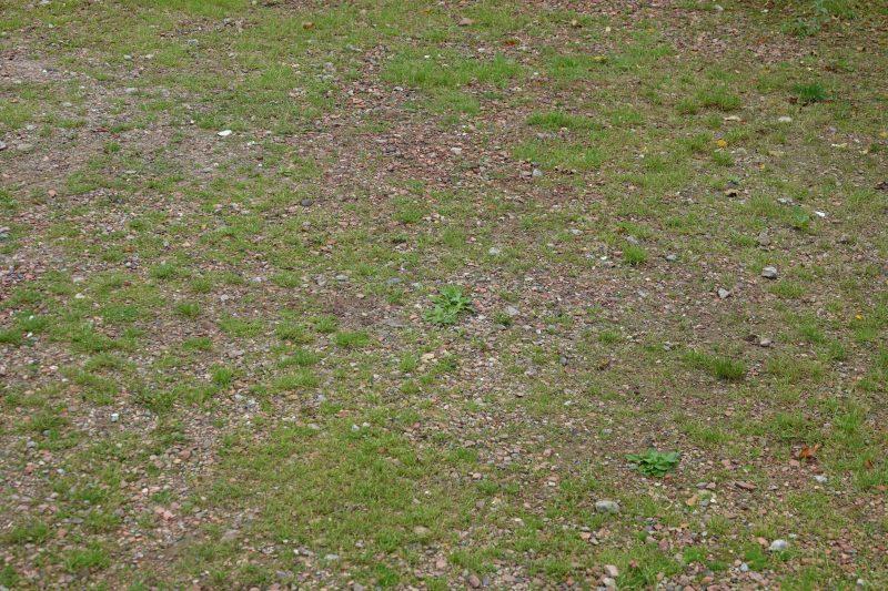 oprit met grind en onkruid